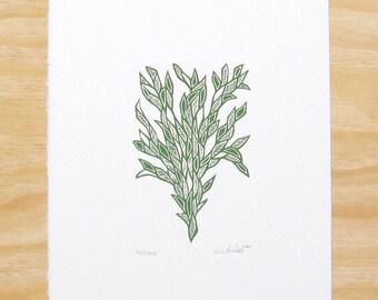 """Woodblock Print - """"Friend"""" Forest Green Plant - Art Printmaking"""