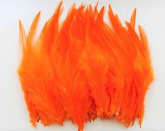 set of 50 feathers orange 10-15cm