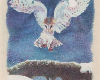 Owl, Alighting - original art