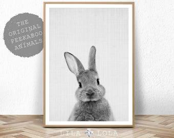 Rabbit Print, Baby Animal Prints, Woodland Nursery Decor, Bunny Wall Art Print, Large Printable Poster, Digital Download, Black and White