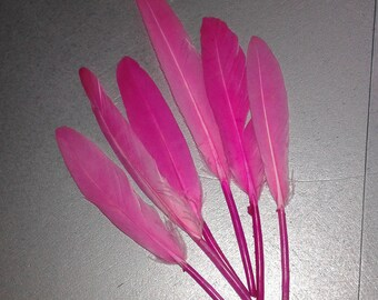 10 pink 11/15 cm natural feathers
