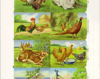 Vintage English Scrap - Garden Fowl and Rabbits for Paper Arts PSS 1993