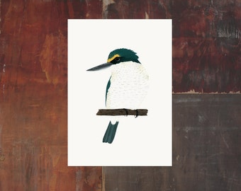 New Zealand Bird Archival Art Print - Kotare Kingfisher
