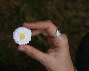 200 Wildflower Daisy Seed Bombs, Weddings Favours, Australian Native Wildflowers, Biodegradable, Favors, Bomboniere, DIY, Garden Wedding