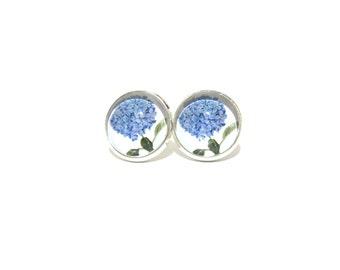Hydrangea earrings, hydrangea studs, hydrangea jewelry, blue hydrangea, flower studs, floral stud earring, clip on Earring, stud earings