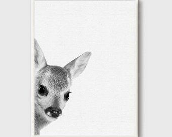Reh Rehkitz, Rehkitz Baby Hirsch Druck, Kindergarten Baby Tier, Hirsch Druck, Woodlands Dekor, Kindergarten Kinder Kunst, Woodlands Kindergarten, Animal-Prints