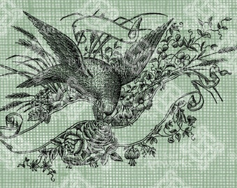 Digital Download, Romantic Bird and Banner with Roses and Shamrocks, Antique Illustration, Iron on Transfer, Digistamp, transparent png