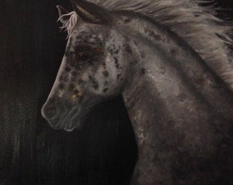 Horse Painting, Horse Oil Painting, Horse Art, Appaloosa. Original Oil painting.