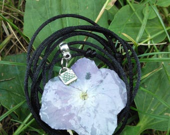Pendant tanned real hydrangea flower and black cord