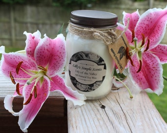 16oz ALL Natural Soy Wax Candle