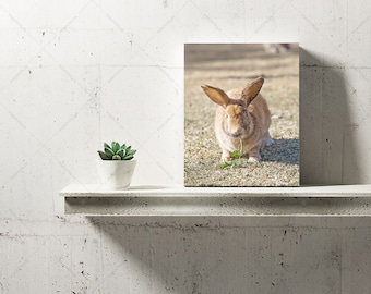 8x10 Stand-Up canvas
