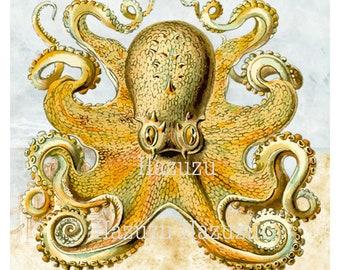 OCTOPUS PNG ocean sea creature print poster clip art digital stamp instant download collage journal scrapbooking