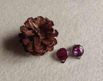 abalone earrings clips