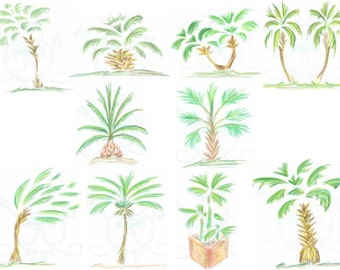 Palm Trees Digital Clip Art Hand Drawn Instant Download Digital Artwork Watercolor tropical beach tree plants summer printable clip art palm