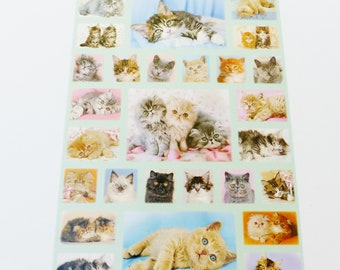 45 stickers square and rectangle kitties cat stickers