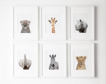 Nursery decor, Safari nursery decor, Safari nursery prints, Safari  Nursery Printable, Safari  animals decor, Baby animals, Nursery art