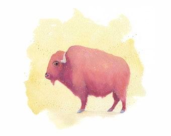 Pink Bison Watercolor Gouache Art