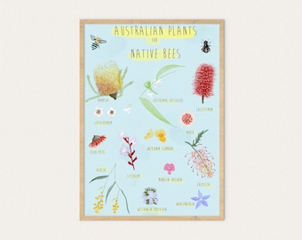 Australian Plants for Native Bees, A3 & A4, Poster, Australian, Native, Bees, Ecology, Conservation, Gardening