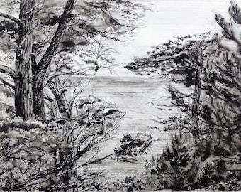 Rocky Coast - Scraggly Pines - Original Illustration
