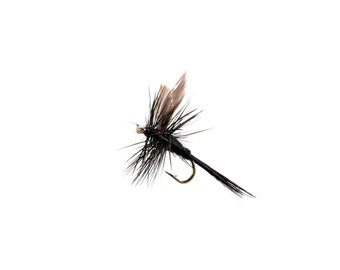 Black Gnat Dry Fishing Fly Sizes 16 and 18 available