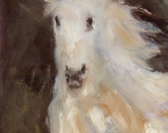 Phantom - Andalusian Horse 8x10 Canvas Giclee of Original Oil Painting by Kathleen Farmer Denver Artist
