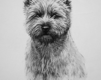 Cairn Terrier dog art dog gift dog lover gift LE print from an original charcoal drawing available unmounted or mounted ready to frame