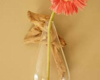 Driftwood Wall Vase