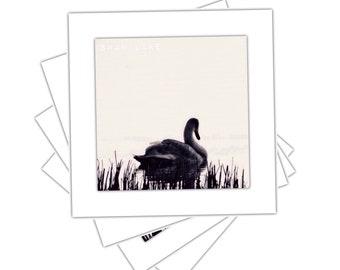 Blank Photo Art Greeting Card - Swan Lake