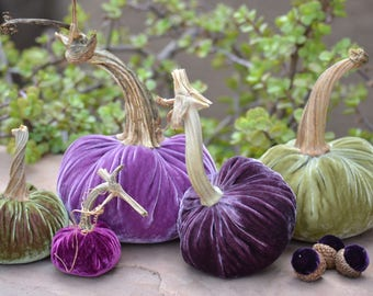 Blushing Olive & Purple Silk Velvet Pumpkins and Acorns with Real Stems