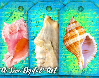 Gift tags printable images, Sea Shell digital collage sheets, instant download, digital printable tags marine life, paper goods supplies