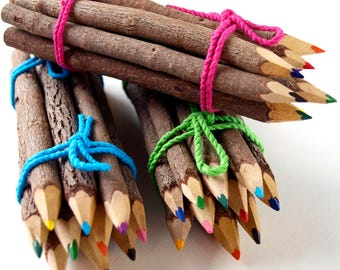Twig Pencil Crayons, Colouring Pencils