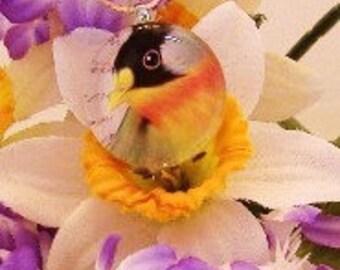 Natures Wonders Bird Pendant