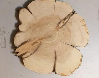 10 1/2 inch x 11 1/2 inch x 1 inch thick  Cedar Wood Slice