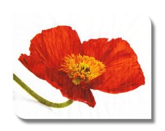 Poppy paper napkin for decoupage, mixed media, collage, scrapbooking x 1. Orange poppy. No 1029