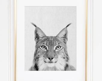 Lynx Print, Wild Cat Print, Lynx Poster, Black And White, Scandinavian Modern, Animal Instant Download, Printable Nursery Animal