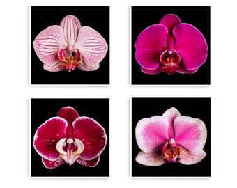Large Botanical Print, Large Wall Art, Floral Wall Art, Pink Flower Wall Art, Set of 4 Prints, Bedroom Wall Art, Orchid Wall Print