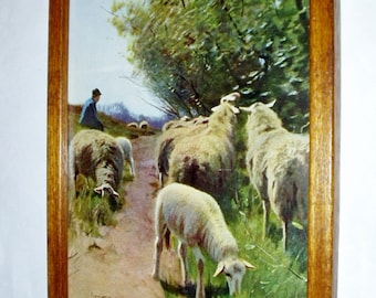 Sheep Ewe Lambs 1910 Original Picture Antique Print The Guarded Flock Wood Frame Artist Ramsdell