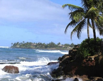 Paia, Fine Art Photography by DENISE SLOAN