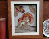 Red Squirrel Art - Framed...