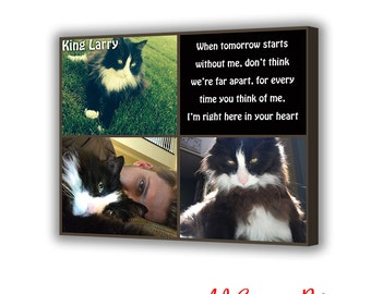 Pet memorial, Pet portrait, Cat photo collage, Personalized pet portrait, Pet loss gift, Pet lover gift, cat memorial, dog memorial gift