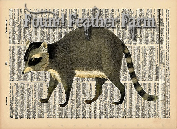 """Vintage Antique Dictionary Page with Antique Print """"Raccoon Color Horizontal"""""""
