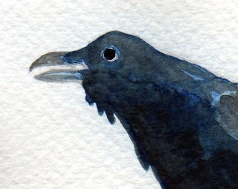 Watercolor Painting: Watercolor Illustration Bird -- Mini Art Print -- Thieving Raven -- ACEO Print