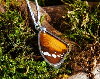 Real Monarch Butterfly wing pendant necklace