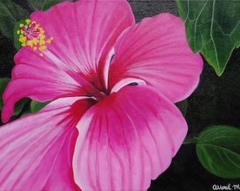 Hibiscus Fine Art Paper Print