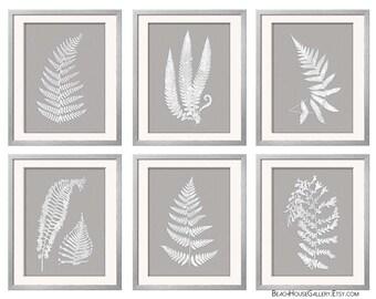 Gray White Wall Art, Fern Botanical Prints, Grey Wall Art, Grey Fern Prints, Antique Fern Prints, Gray Ferns, Garden Botanical, Set of 6