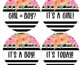FREE GIFT, Pregnancy Stickers, Gender Reveal Stickers, Pregnancy Milestones, Weekly Pregnancy Stickers, Baby Bump Stickers  (377)