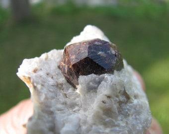 Garnet Crystal in White Quartzite Matrix x 2 - Namibia
