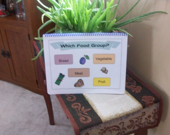 Which Food Group Autism File Folder Game Board