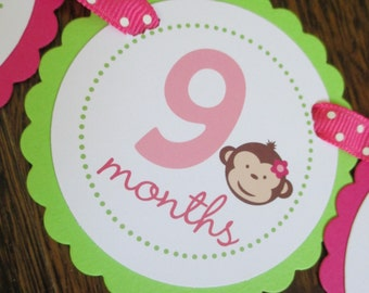 Mod Monkey Collection: Just Born/0-12 mos Picture Banner. Monkey GIRL First Birthday Banner. Hot Pink & Lime. Flower.
