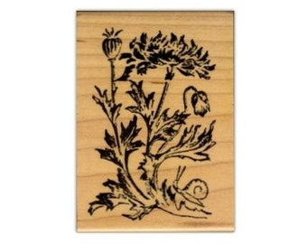 POPPIES Mounted poppy flower rubber stamp, nature, summer, Sweet Grass Stamps #1